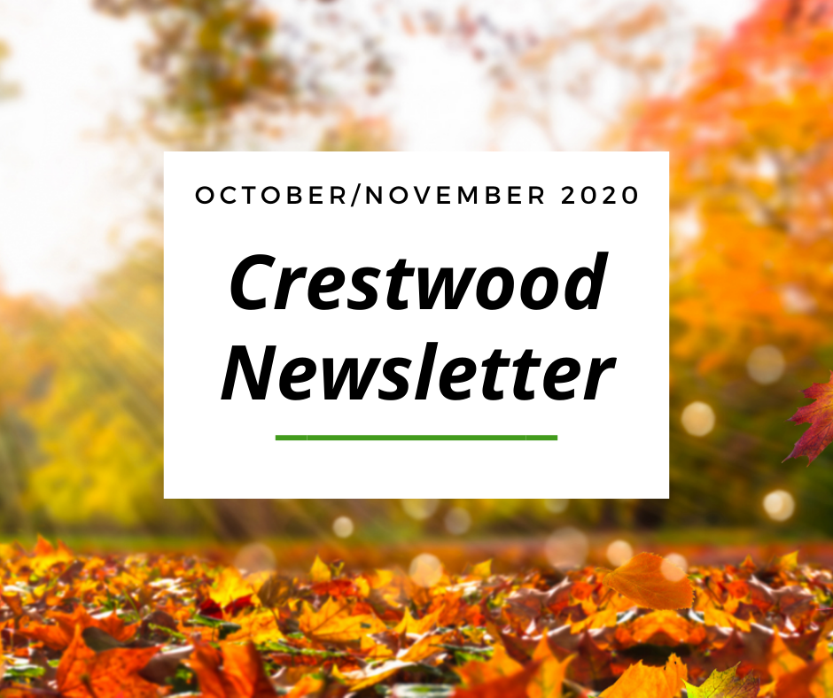 October Newsletter Website Image